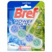 Kostka toaletowa WC Bref Power Active Pine